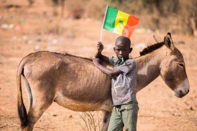 senegal-football-drapeau-supporter-enfant