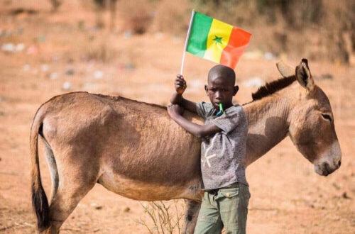 Article : Dakar se prépare et sera prête